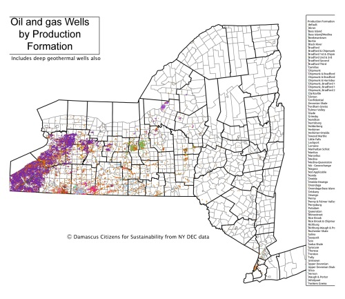 NY State Oil and gas wells by production Formation map4